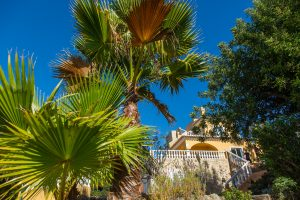 Plan your Algarve Retreat with sun & soul